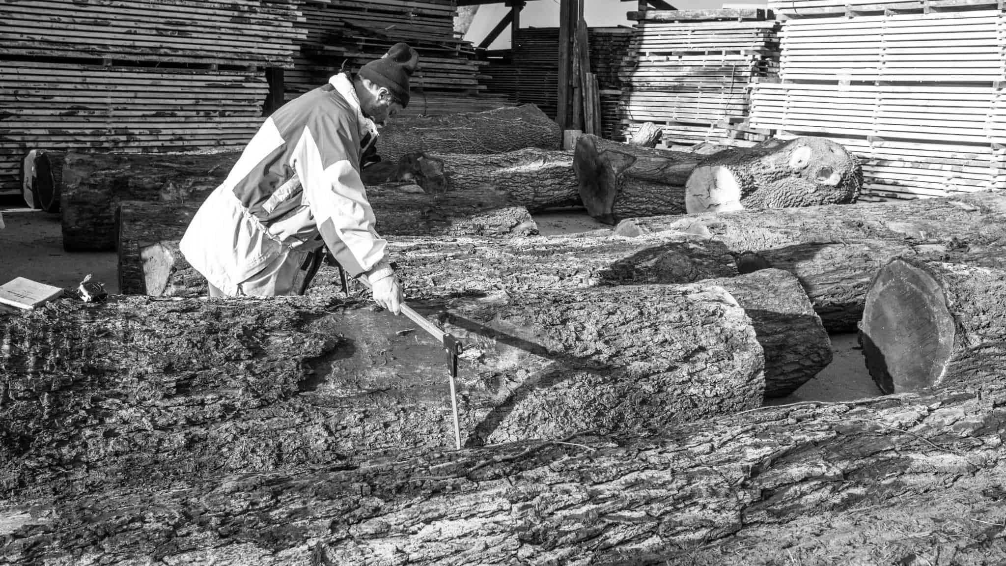Ernst Schwarz beim Holzeinkauf