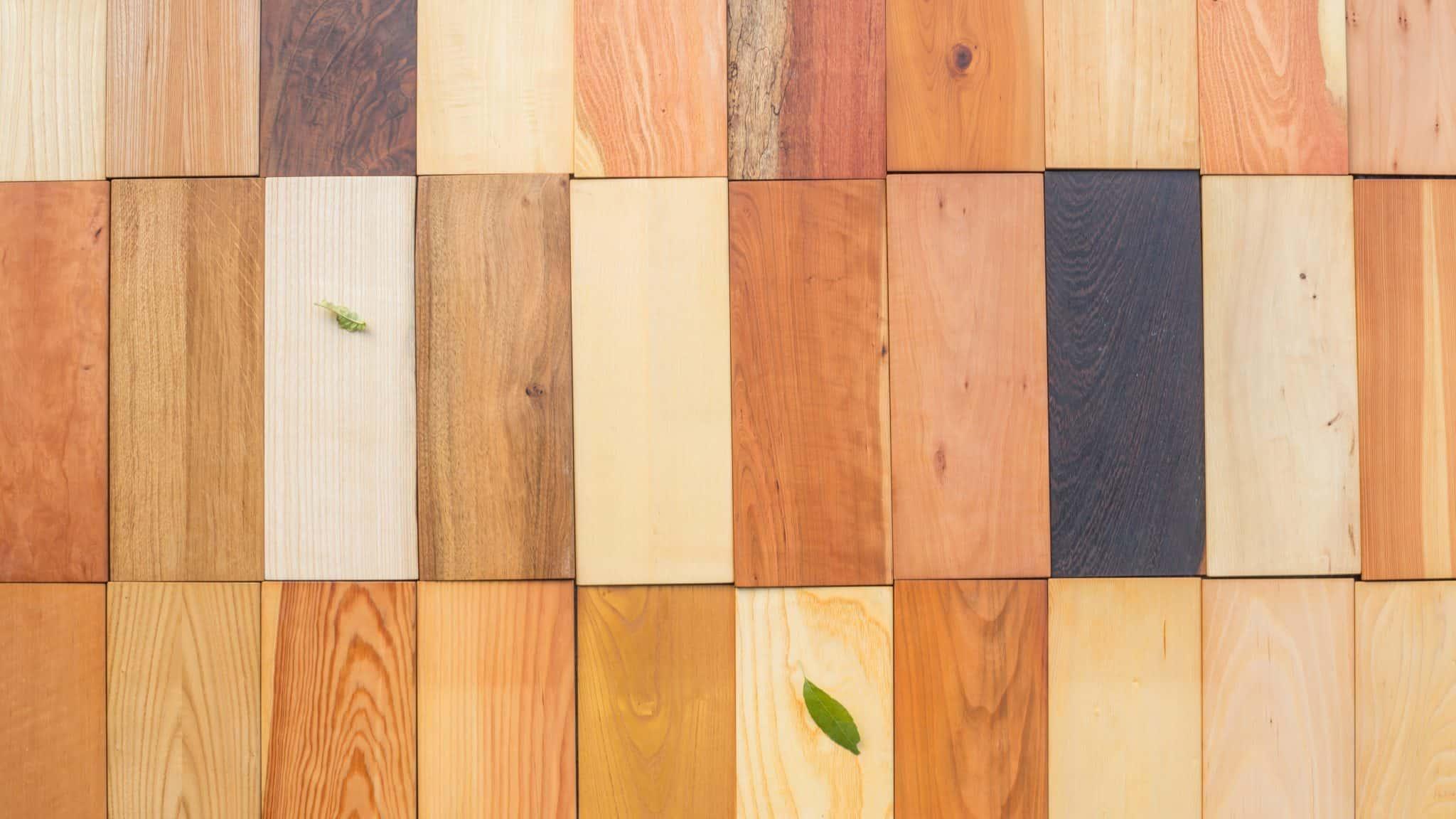 Große Holzauswahl bei Ernst Schwarz Holzhandel
